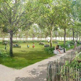 Bois des Noyers - projet